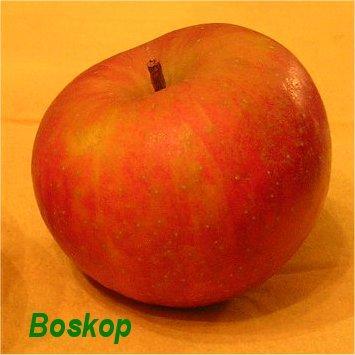 La Boskop